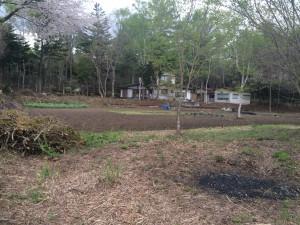 農園開墾①/農園・設備